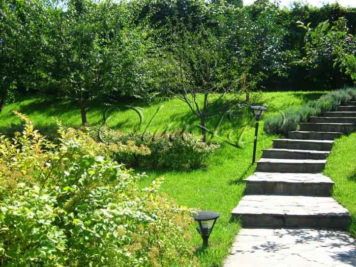 Фруктовый сад своими руками фото